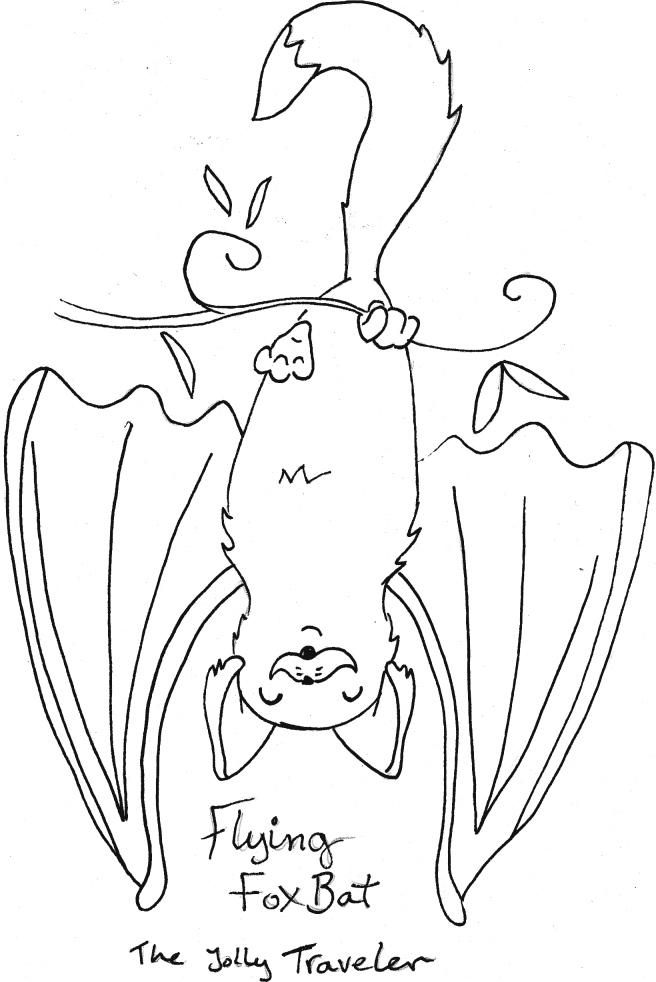 flying foxbat